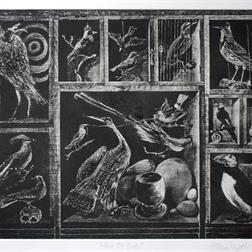 A Box Of Birds